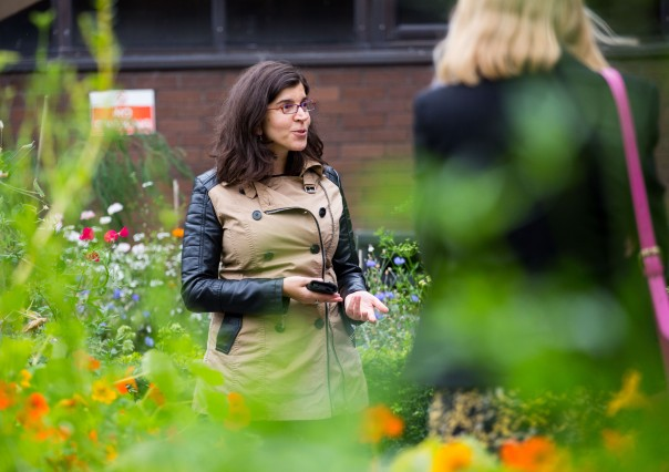 09/09/2015 University of Limerick, Green Campus Flag assessment team tour. Maria Lichrou showing the assessment team the roff top garden. Picture: Alan Place/Fusionshooters.