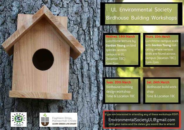 birdhouse building workshops
