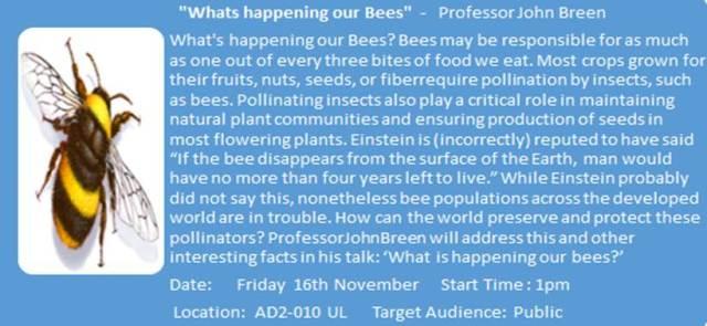 bee demonstration